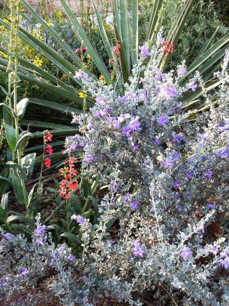 landscaping ideas sloped backyard
